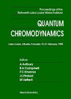 Quantum Chromodynamics - Proceedings Of The Thirteenth Lake Louise Winter Institute (Hardback)
