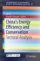 China's Energy Efficiency and Conservation: Sectoral Analysis - SpringerBriefs in Environment, Security, Development and Peace 30 (Paperback)