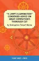 A Lamp's Illumination Condensed Advice on Great Completion's Thorough Cut (Paperback)