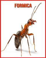 Formica: Immagini bellissime e fatti interessanti Libro per bambini sui Formica (Paperback)