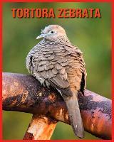 Tortora Zebrata: Immagini bellissime e fatti interessanti Libro per bambini sui Tortora Zebrata (Paperback)