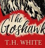 T. H. White's The Goshawk