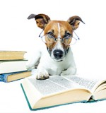Beware My Fangs – Five Fictional Dogs