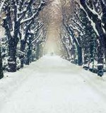 A Walk in The Fictional Snow: Seven Chilling Winter Tales