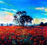 Where Poppies Blow: Q & A with John Lewis-Stempel