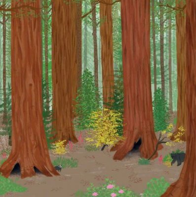 Stickertopia The Forest: Create beautiful artworks, one sticker at a time (Paperback)