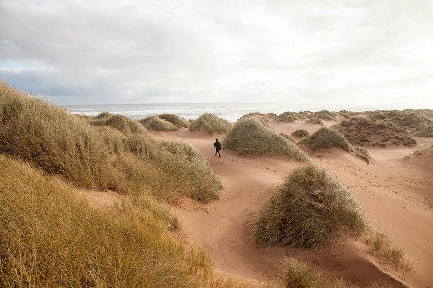 Sands of  Forvie