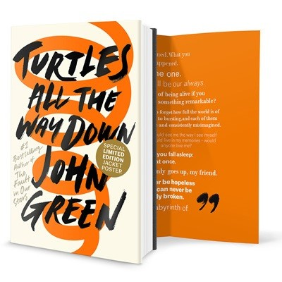 Turtles All the Way Down (Hardback)