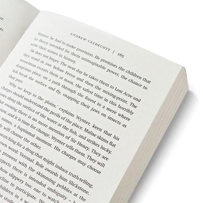 Rotherweird: Rotherweird Book I - Rotherweird (Paperback)