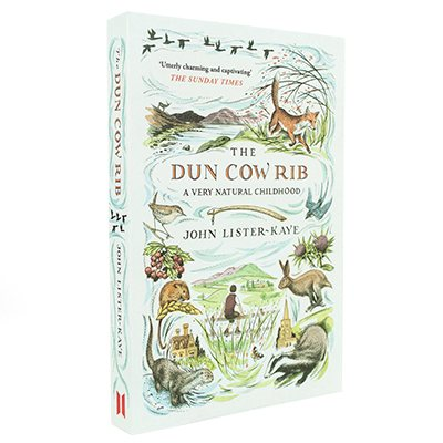 The Dun Cow Rib: A Very Natural Childhood (Paperback)