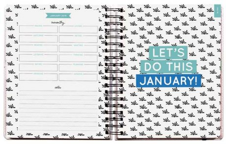 2019 Pipsticks Building My Empire Planner (Calendar)