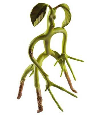 Poseable Bowtruckle