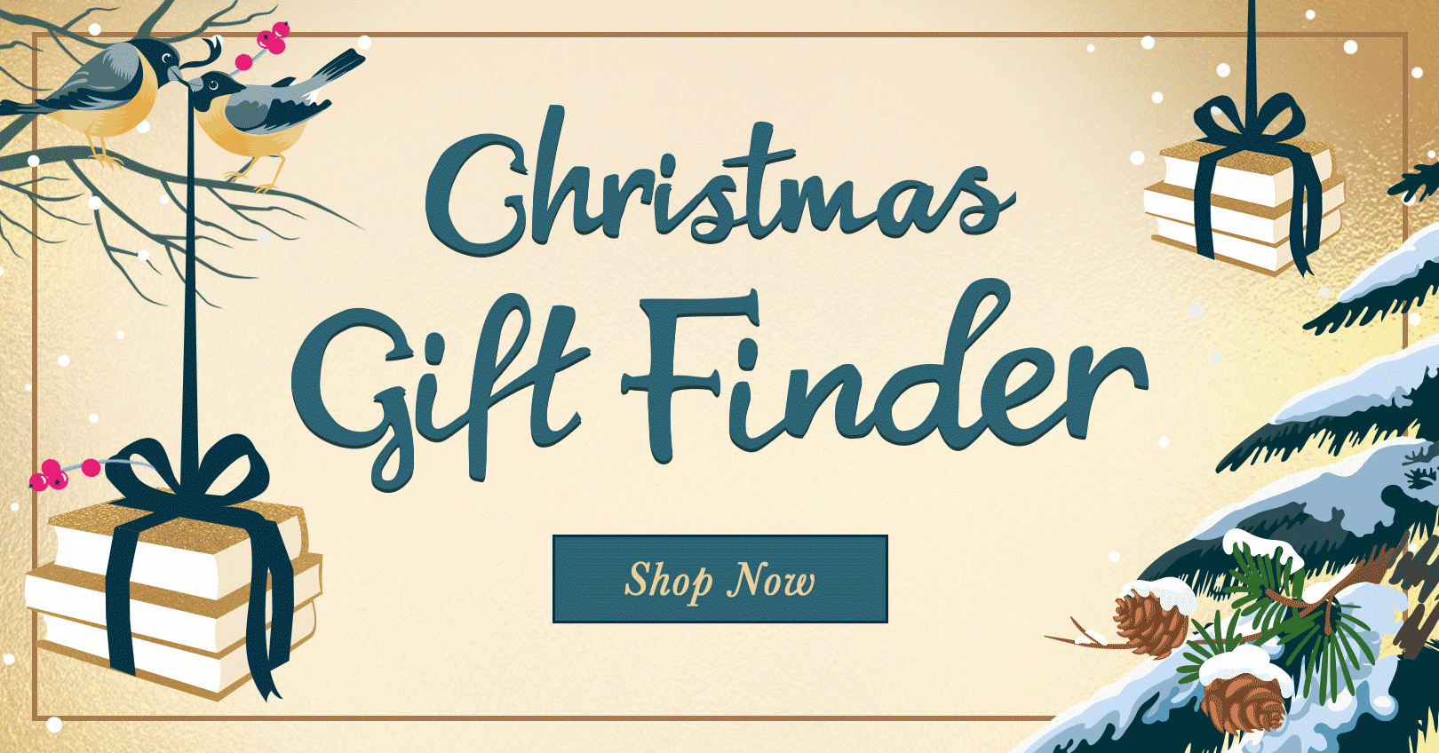 f5e6458362b2 Waterstones Christmas Gift Finder