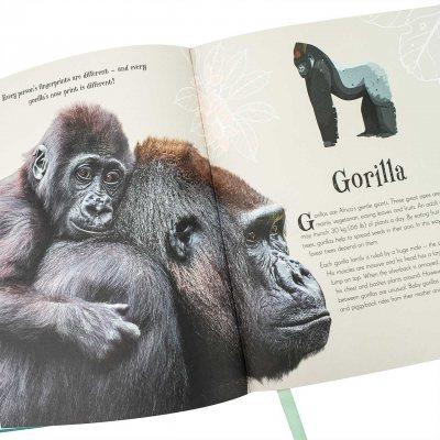 An Anthology of Intriguing Animals (Hardback)