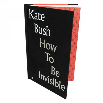 How To Be Invisible (Hardback)