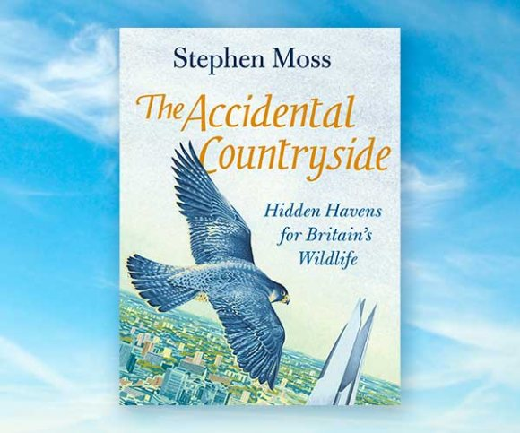 Stephen Moss on the Wonders of the Accidental Countryside