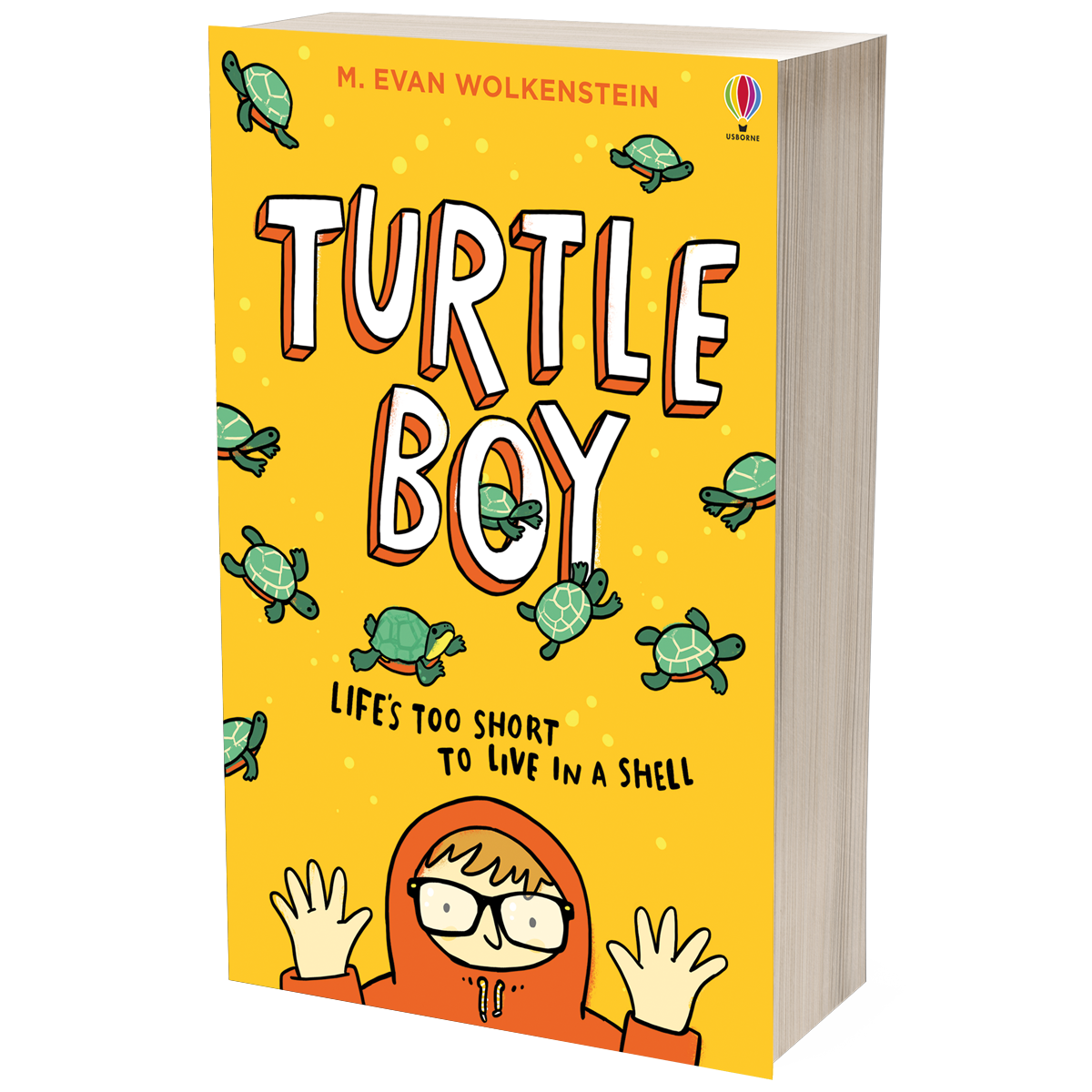 Turtle Boy (Paperback)