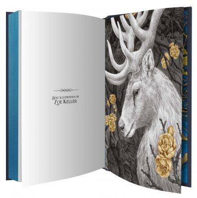 Shadow and Bone: Collector's Edition - Shadow and Bone (Hardback)