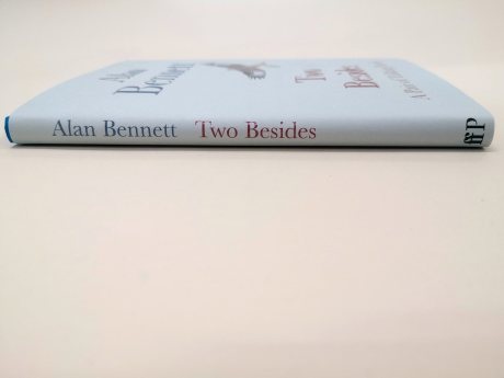Two Besides: A Pair of Talking Heads (Hardback)