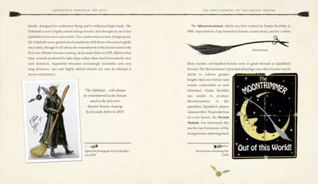 Quidditch Through the Ages - Illustrated Edition: A magical companion to the Harry Potter stories (Hardback)