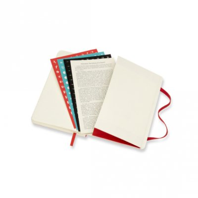 Scarlett Pocket Weekly Softcover 18 Month Diary 2021-2022 (Diary)