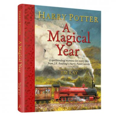 Harry Potter - A Magical Year: The Illustrations of Jim Kay (Hardback)