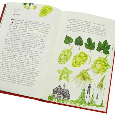 Around the World in 80 Plants (Hardback)