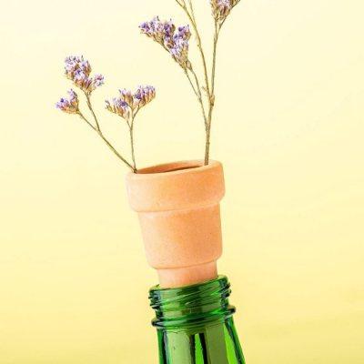 Bottle Top Herb planters