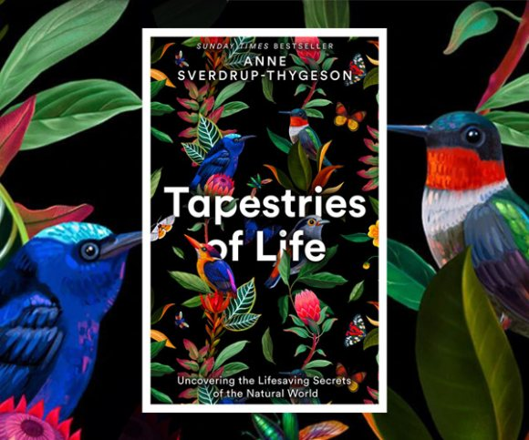 'Nature Is All We Have, And All We Are': Anne Sverdrup-Thygeson on Tapestries of Life