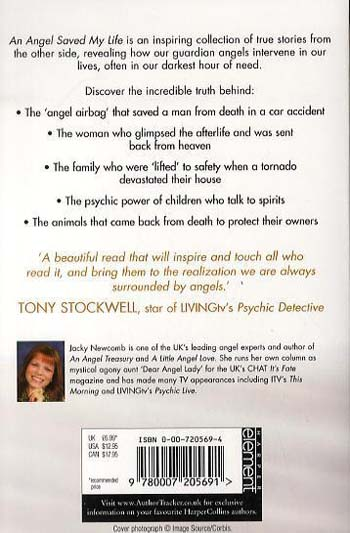An Angel Saved My Life: And Other True Stories of the Afterlife (Paperback)