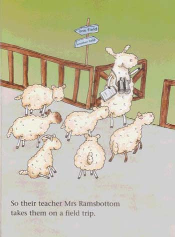 Baa for Beginners (Hardback)