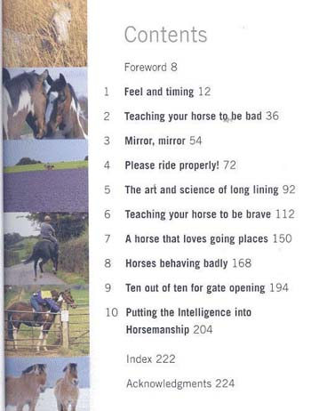 Perfect Partners: How to be the owner that your horse would choose for himself (Paperback)