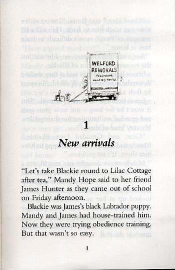 Rabbit Race - Animal Ark Pets No. 50 (Paperback)