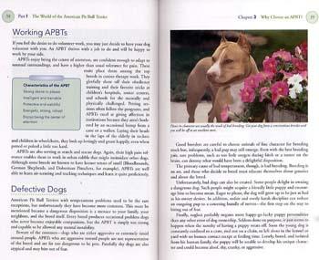 American Pit Bull Terrier - Happy Healthy Pet (Hardback)