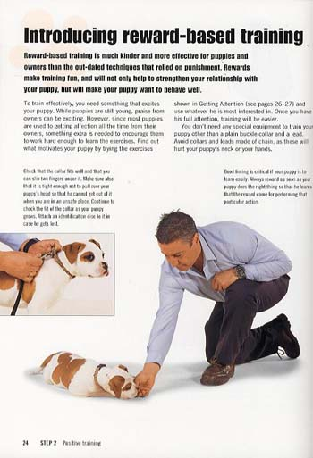 Puppy School: 7 Steps to the Perfect Puppy (Paperback)
