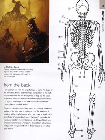 Anatomy for Fantasy Artists: An Illustrator's Guide to ...