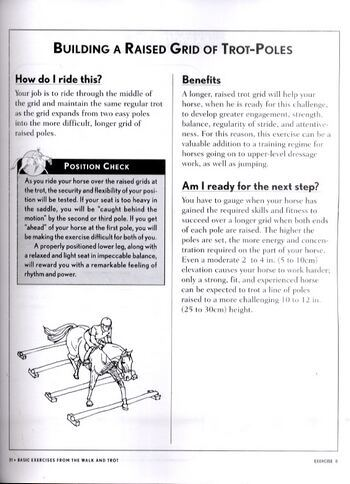 101 Jumping Exercises: For Horse and Rider (Paperback)