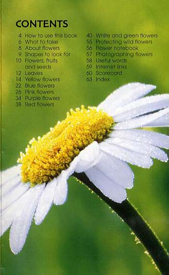 Wild Flowers - Spotter's Guide (Paperback)