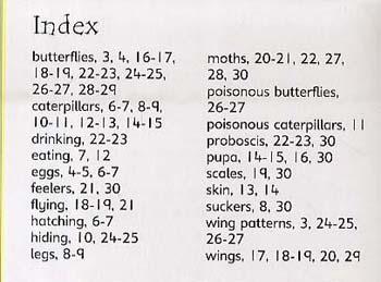 Caterpillars And Butterflies - Beginners Series (Hardback)