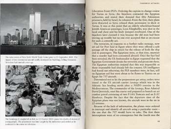 Terrorism: Inside A World Phenomenon (Paperback)