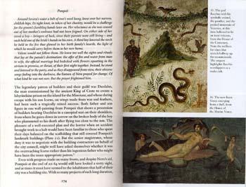 Pompeii (Paperback)
