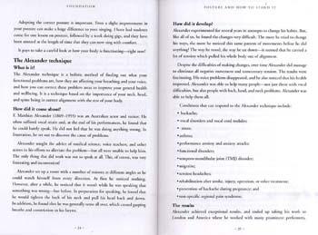 The Working Singer's Handbook (Paperback)