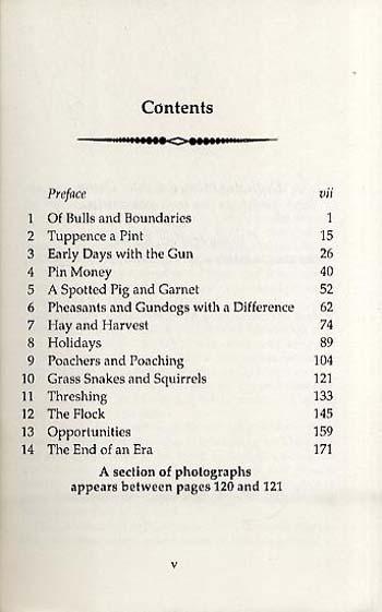 The Spacious Days (Paperback)