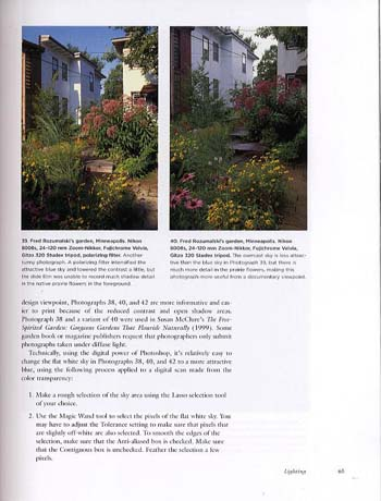 The Art of Garden Photography (Paperback)