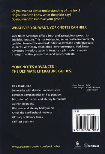 Nineteen Eighty Four: York Notes Advanced - York Notes Advanced (Paperback)