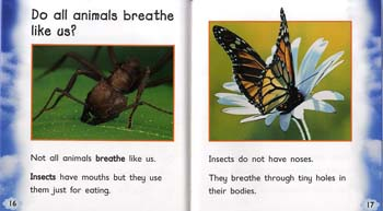 Air - Read and Learn: What Living Things Need (Hardback)