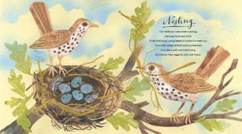 A First Book of Nature (Hardback)
