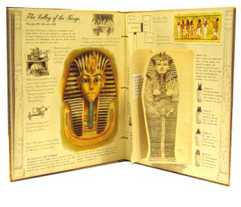 Egyptology by Dugald Steer | Waterstones