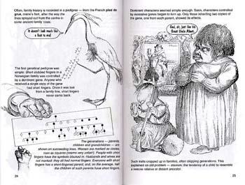 Introducing Genetics (Paperback)