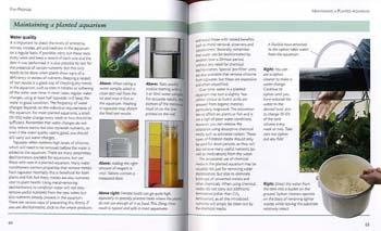 Mini Encyclopedia of Aquarium Plants (Paperback)